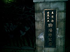 20041113shimokita3.jpg
